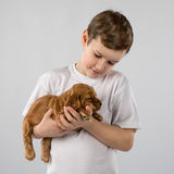 Boy with red puppy isolated on white background. Kid Pet Friendship Royalty Free Stock Photography