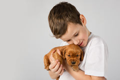 Boy with red puppy isolated on white background. Kid Pet Friendship Stock Photography