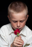 Boy with red rose Royalty Free Stock Photos