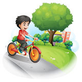 A boy with a red shirt biking Stock Photo