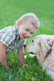 Boy with retriever outdoor Stock Photo