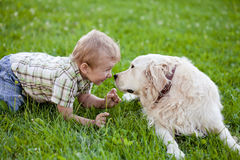 Boy with retriever outdoor Royalty Free Stock Images