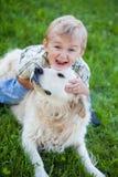 Boy with retriever outdoor Stock Photos