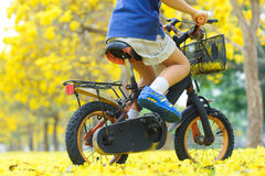 Boy ride bicycle in a park Stock Image