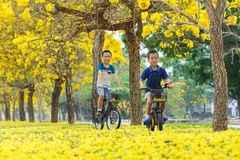 Boy ride bicycle in a park Royalty Free Stock Photo