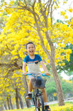 Boy ride bicycle in a park Royalty Free Stock Photography