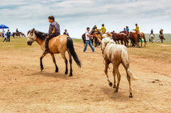 Boy rides bareback at Nadaam horse race Royalty Free Stock Images