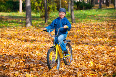 Boy rides a bicycle in park Royalty Free Stock Images