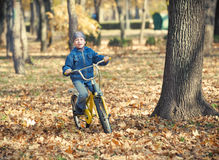 Boy rides a bicycle in park Royalty Free Stock Photos