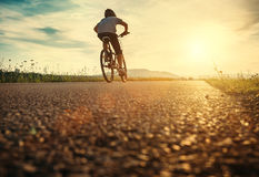 Boy rides a bicycle in the sunset light Stock Image