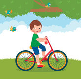 Boy rides a bike Stock Photos