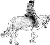 Boy rides a horse Stock Photos
