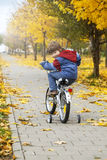 Boy riding a bicycle Royalty Free Stock Photos