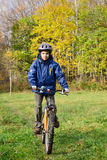 Boy riding bicycle in a park Royalty Free Stock Photos
