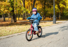 Boy riding on bicycle in park Royalty Free Stock Photography