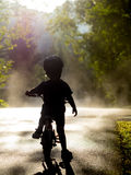 Boy riding bike in mist. And trees Royalty Free Stock Image