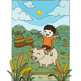 A boy riding a buffalo in the field. Royalty Free Stock Photo