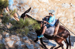 A boy riding on the donkey the steep mountain up. Lindos Acropolis, Rhodes Island, Greece Royalty Free Stock Photo