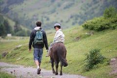 Boy riding a horse royalty free stock image