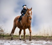 Boy Riding School Royalty Free Stock Images