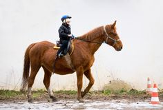 Boy Riding School Stock Photography