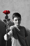 Boy with rose Royalty Free Stock Photo