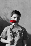 Boy with rose Royalty Free Stock Image