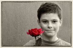 Boy with rose Stock Image