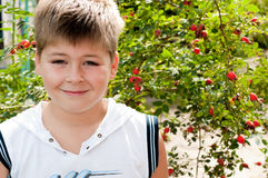 Boy about rosehip with ripe fruits Stock Photography