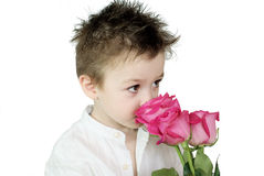 Boy and roses. Young boy with pink roses on white background Royalty Free Stock Image