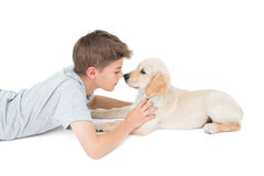 Boy rubbing nose with dog over white background Stock Image