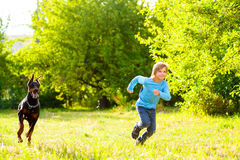 Boy running away from dog or doberman in summer Stock Image