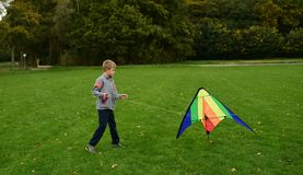 The boy runs a kite. The boy runs a bright kite on a green meadow Royalty Free Stock Photography