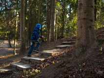 Boy runs up the stairs. In the evening forest royalty free stock images