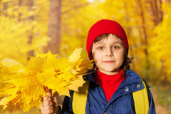 Boy's close up view with yellow maple leaves Royalty Free Stock Photo