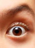 Boy's eye. Close-up Royalty Free Stock Photo