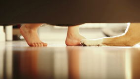 Boy`s legs and dog`s paws viewed from under the bed as they play stock video footage