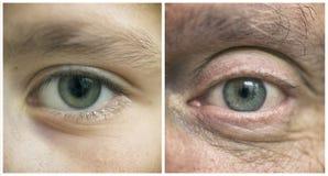 Boy& x27; s ogen en men& x27; s ogen Stock Foto's