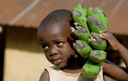 The boy's portrait with a linking of bananas who goes to the market them to sell. Royalty Free Stock Image
