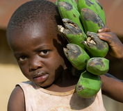 The boy's portrait with a linking of bananas who goes to the market them to sell. Stock Photography