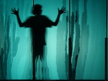 Boy's silhouette. With cactus Stock Photography