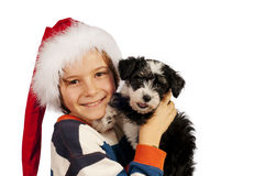 Boy with Santa hat and puppy Royalty Free Stock Images