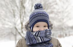 Boy scarf frost park winter Stock Photography