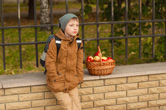 Boy with a school backpack with a basket of apples Stock Image