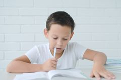 Boy schoolboy teaches lessons writing in notebook and reading books stock photo