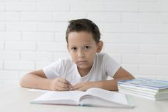 Boy schoolboy teaches lessons writing in notebook and reading books stock photos