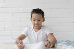 Boy schoolboy teaches lessons writing in notebook and reading books royalty free stock photos