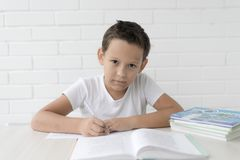 Boy schoolboy teaches lessons writing in notebook and reading books royalty free stock image