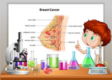 Boy in science class explaining breast cancer Royalty Free Stock Photos