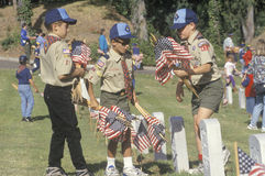 Boy Scouts placing flags. At a Veteran's Cemetary Royalty Free Stock Image